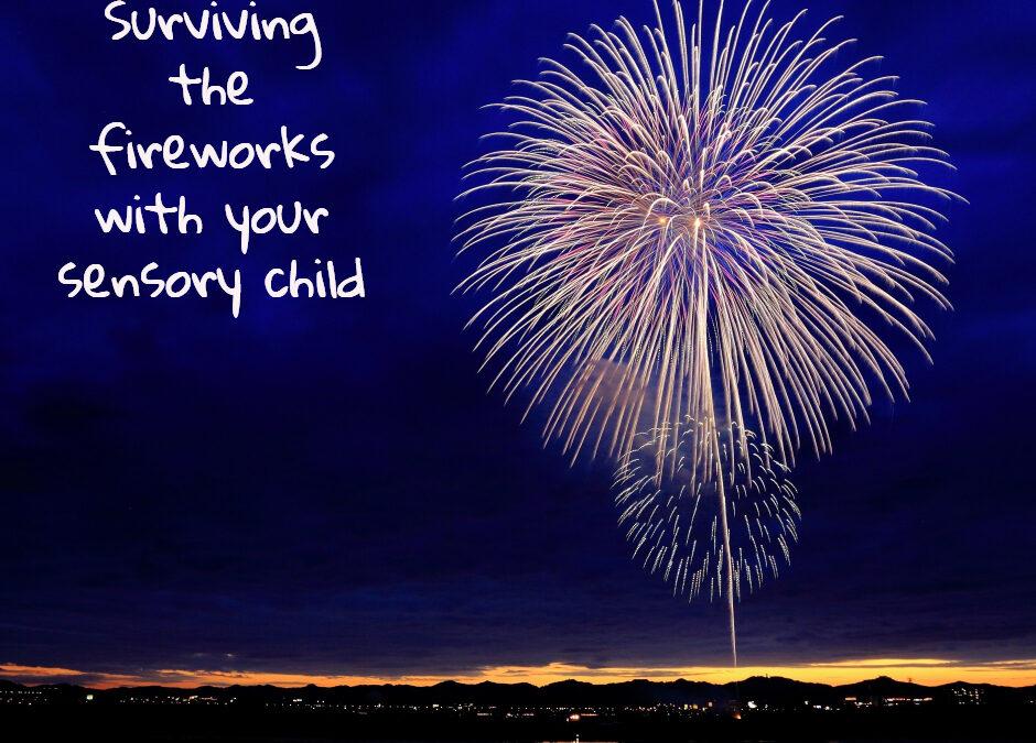 Fireworks Survival Guide