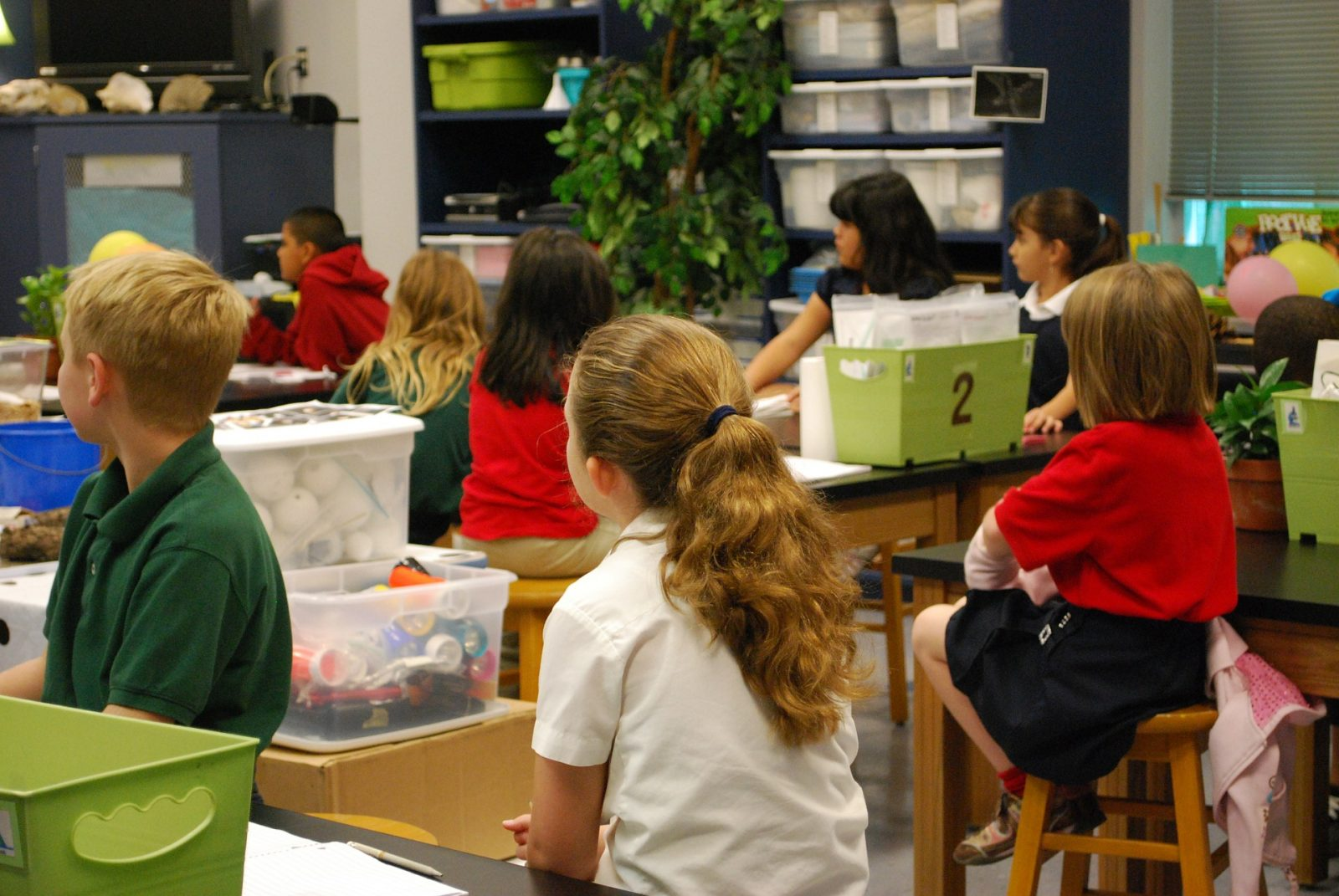 How Does YOUR Sensory Preference Influence Your Classroom or Clinic LS4K